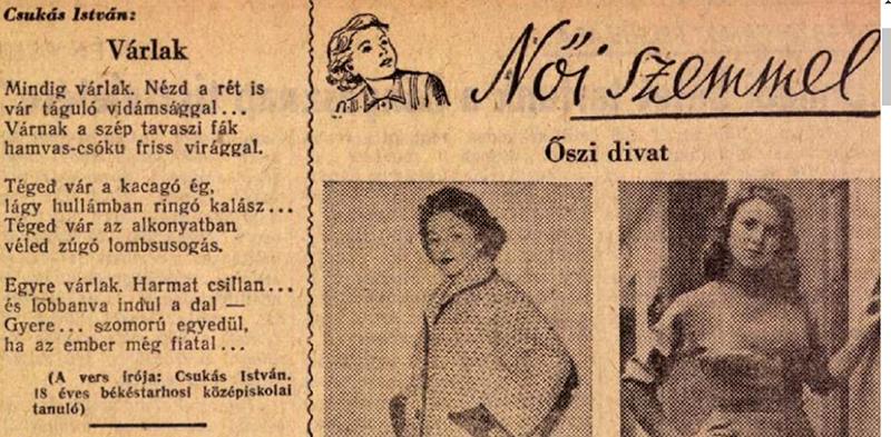 Női szemmel: Szabad Ifjuság, 1954. július-szeptember 1954-08-19