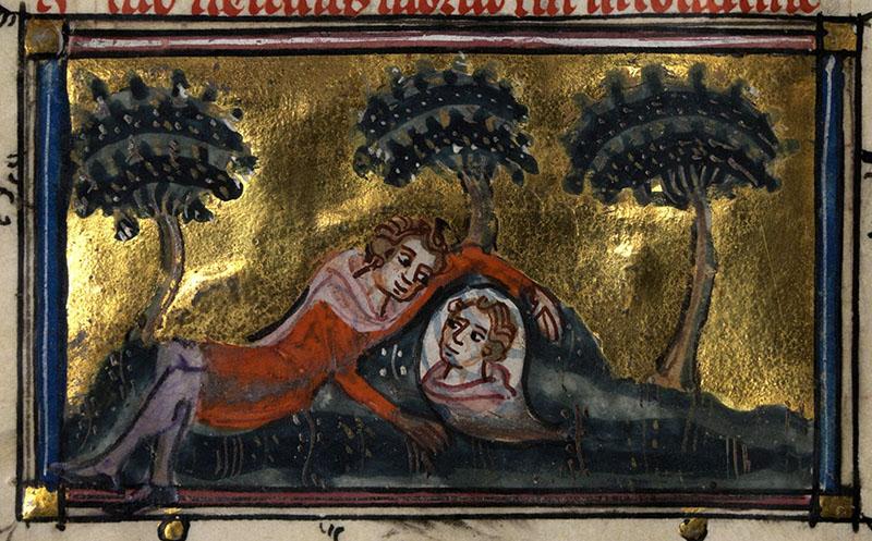Narcissus forrása és a rózsafák