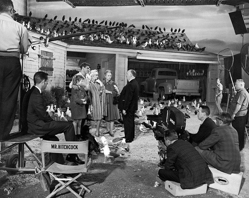 Alfred Hitchcock a Madarak forgatásán