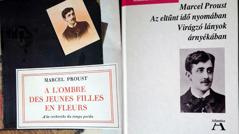 A könyv francia és magyar kiadása