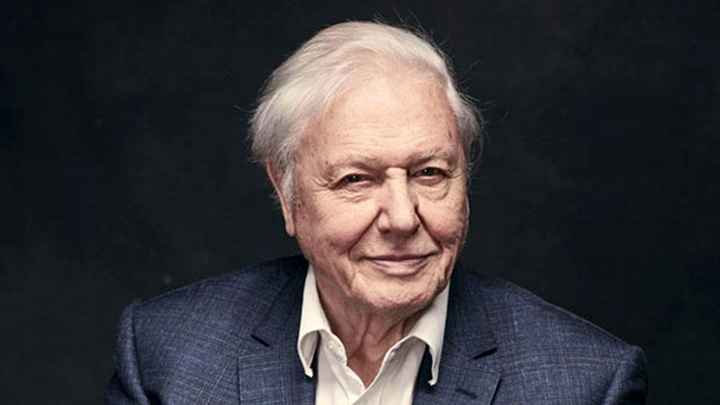 David Attenborough online földrajzórát tart