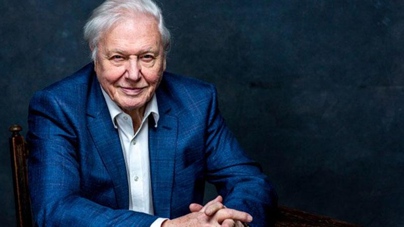 Sir David Attenborough idén már a 94. évét töltötte