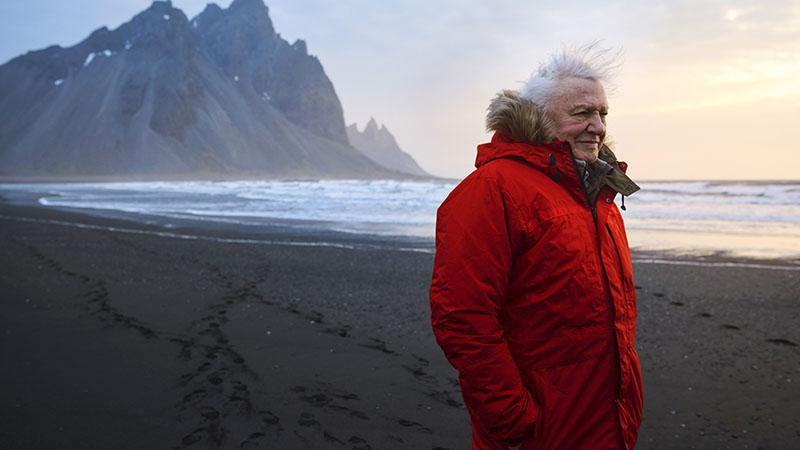David Attenborough jóval a 90. éve felett sem pihen