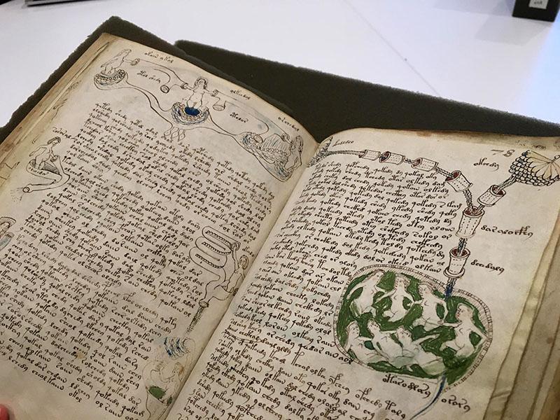 A rejtélyes kézirat jelenleg a Yale Egyetem tulajdonában van Cunnecticutban