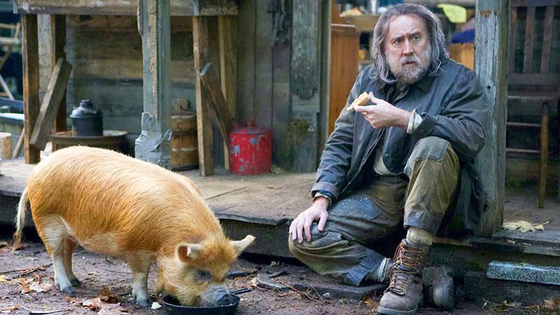 Nicolas Cage megint valami érdekes?-be nyúlt