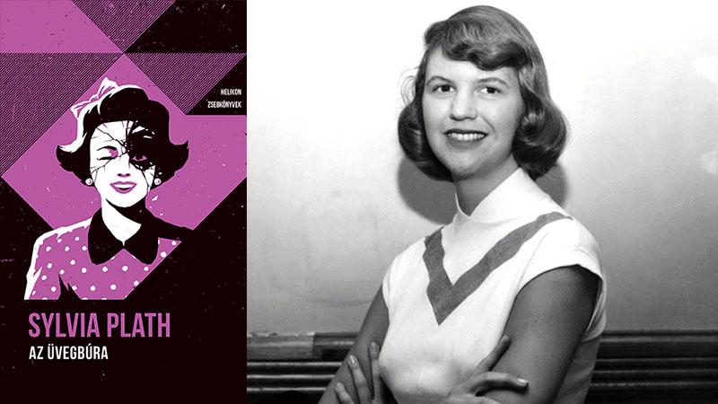 Sylvia Plath halálakor épp második regényén dolgozott, mely sosem jelenhetett meg