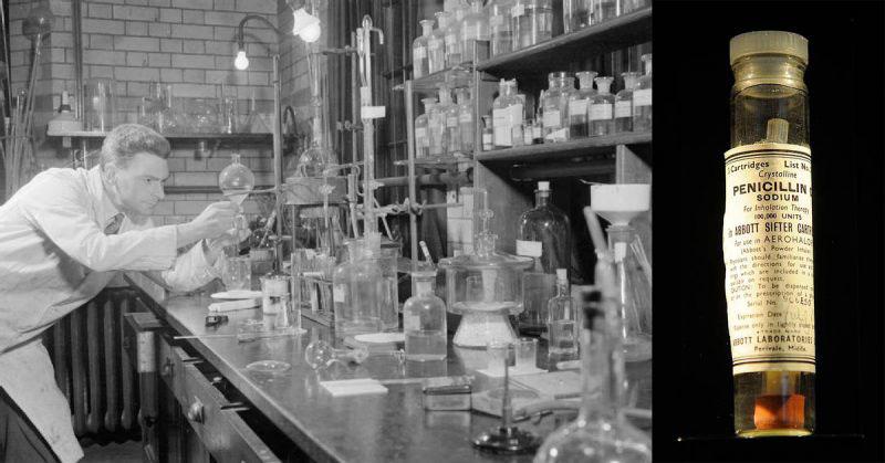 Fleming és a penicillin-kísérletek