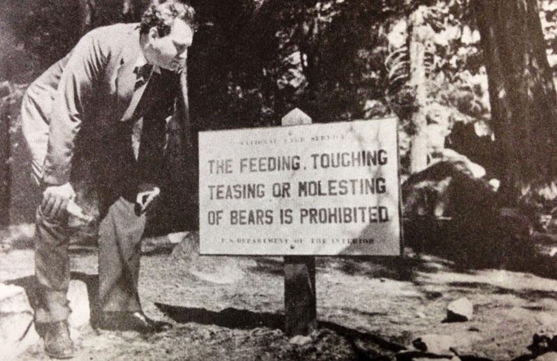 Wolfe amerikai utazgatásai során a Yellowstone Nemzeti Parkban