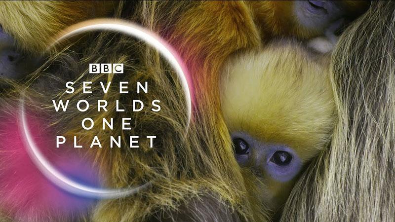 Hét világ, egy bolygó