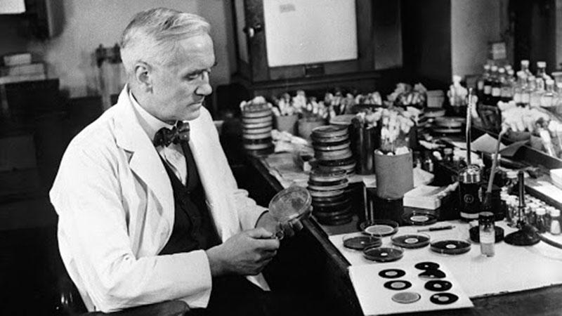 Alexander Fleming, és a penicillin