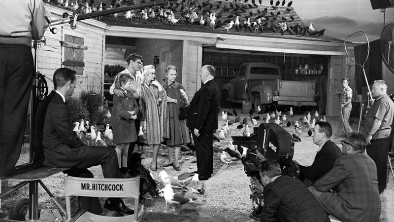 Hitchcock ad instrukciókat a Madarak forgatásán